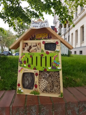 Insektenquartier kiwigrün mit Schmetterlingen und Marienkäfern - personalisiert